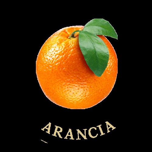 arancia-frutti-terra-calabria